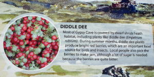 Sign about diddle Dee