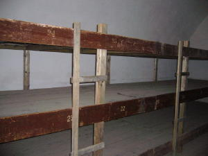 Bunks in Prison Cell